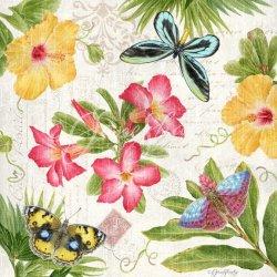 JS-D489 tropical butterflies